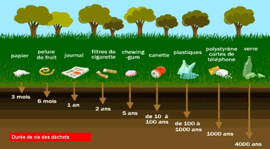 Durée de vie de différents déchets jetés en pleine nature