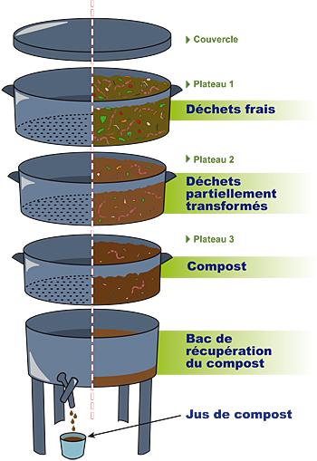 Lelombricomposteur un manièere simple et écologique de transformer et recycler vos déchets