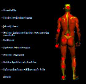 Différentes zones du corps impactées par les bienfaits du spa